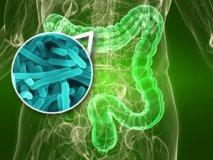 Как восстановить кишечник после отравления