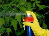 Отравление пестицидами — симптомы и первая помощь