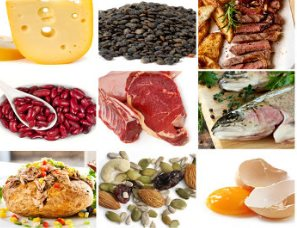 коллаж из продуктов, содержащих белок