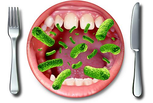 бактерии — причина отравления