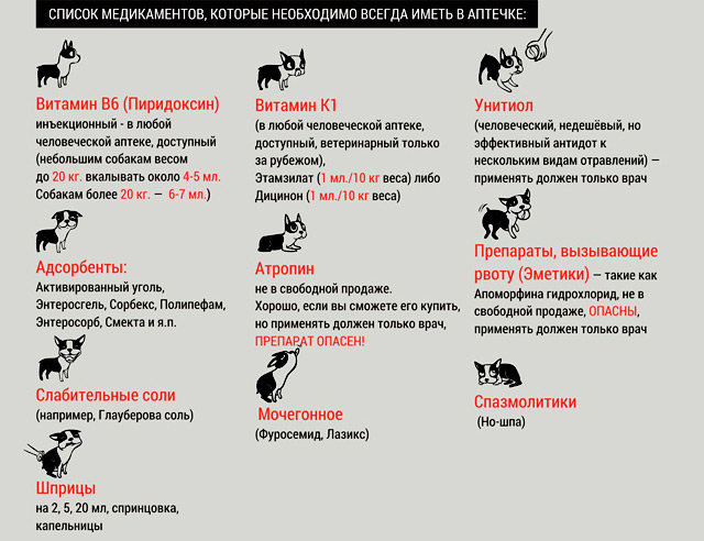 какие лекарства надо иметь в домашней аптечке на случай отравления собаки