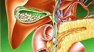 Количество тромбоцитов при гепатите с
