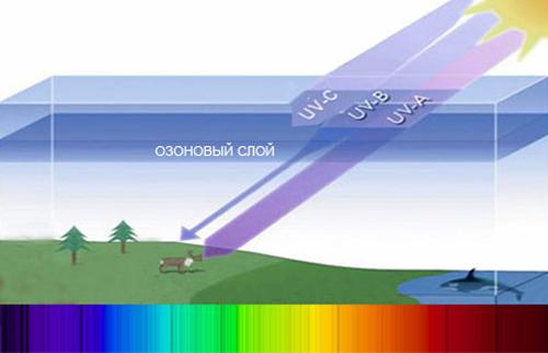 ультрафиолет в природе