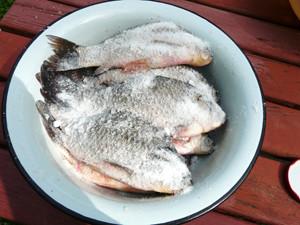 рыба в соли лежит в тазике