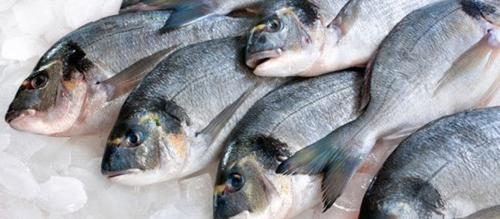 как рыба заражается ботулизмом