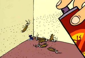 травление насекомых диклофосом