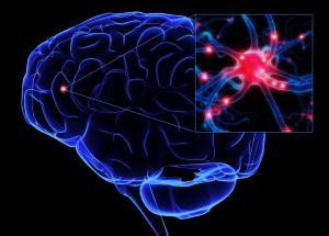 воздействие электромагнитных полей и излучений на организм человека
