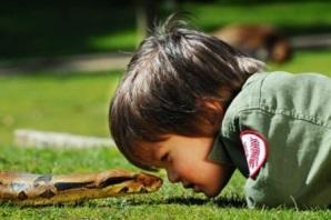 змея укусила ребёнка
