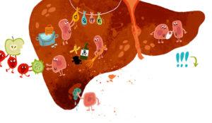 токсины в печени рисунок