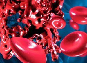 кровяные тельца рисунок