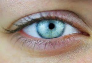 глаз с узким зрачком