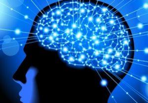 головной мозг человека под ЛСД