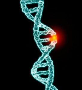 деформация цепочки ДНК под воздействием диоксида титана