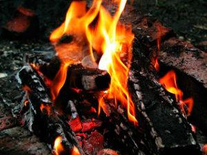 продукты горения древесины