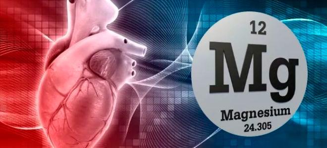 магний и сердце человека