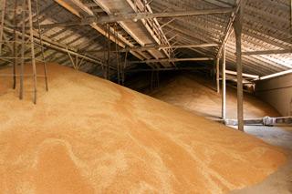 хранилище зерна