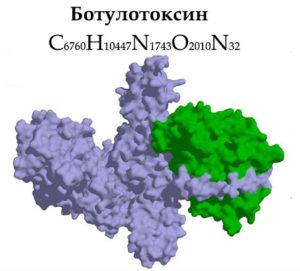 структурная и химическая формула ботулотоксина