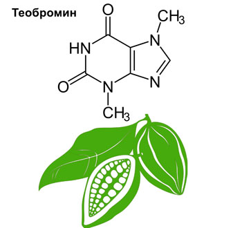 структурная формула теобромина на фоне какао-бобов